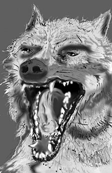 Snapping Wolf - Artwork by Doug Peters